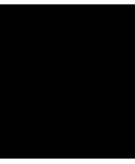 Cebra 2