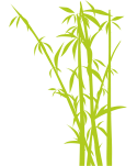 Arbol Bamboo