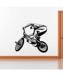 Bici Cross 2